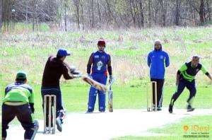 Alby Cricket Club Sweden